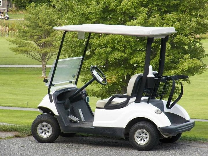 Hearthside Grove Lake Erie - Golf Cart