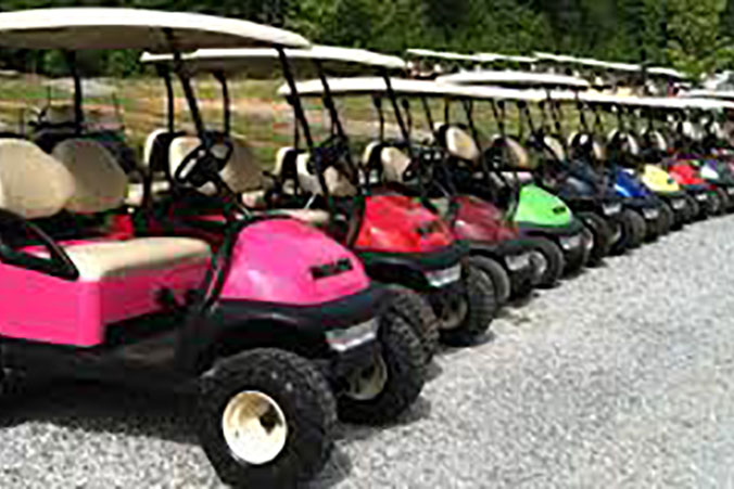 Hearthside Grove Lake Erie – Rentals – Golf Carts